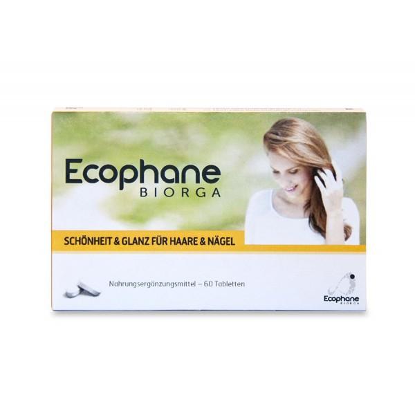 Ecophane comprimé